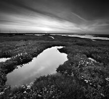 Salt Marsh Sunset BW by Andy F