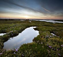 Salt Marsh Sunset by Andy F
