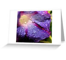 Rain from Heaven  Greeting Card