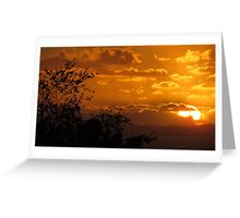 Totara Park Sunset, Auckland NZ Greeting Card