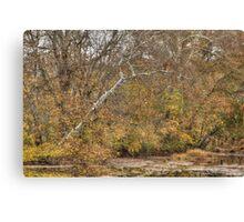 Tree Bones Canvas Print