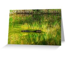 Beaver or Otter or Muskrat? Greeting Card