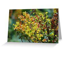 Jungle's Blossoms - Flores De La Selva Greeting Card