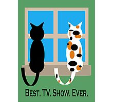 Window Cats - Best. TV. Show. Ever. Photographic Print