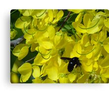 Flower And Fly - Flor Y Mosca Canvas Print