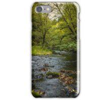 Lake Creek #4434 iPhone Case/Skin
