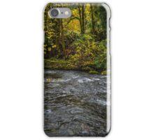 Lake Creek #445RTF iPhone Case/Skin