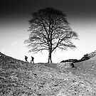 Walkers at Sycamore Gap, Hadrian&#x27;s Wall, Northumberland by Iain MacLean