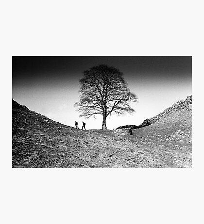 Walkers at Sycamore Gap, Hadrian's Wall, Northumberland Photographic Print