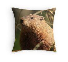 Close Encounter with a Groundhog Throw Pillow