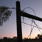 Ellendale fence at sunset by kate18a
