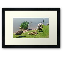 Honey, can you call the babysitter? I wanted us to make of a splash of it tonight! Framed Print