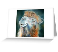 Regal Dromedary Greeting Card