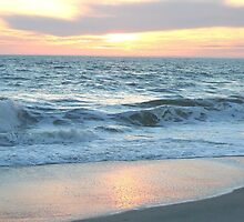 Edisto sunset shoreline by sullah