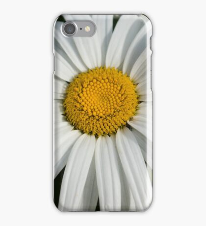 Just a Daisy - Simply Beautiful iPhone Case/Skin