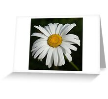 Just a Daisy Greeting Card