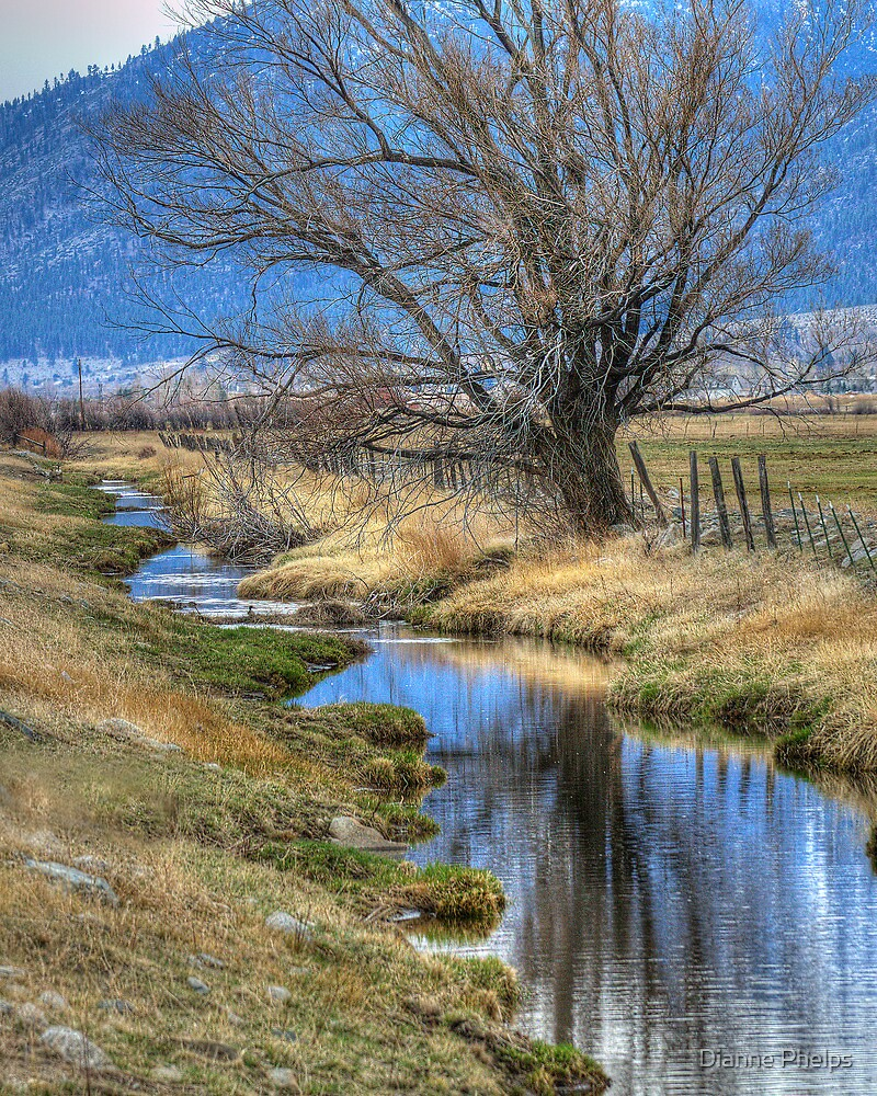 Carson Valley Ranch by Dianne Phelps