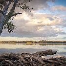 Lake Weyba by cowwws