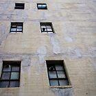 Urban abstract photo of windows by crazylemur