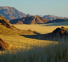 in the Namib desert by supergold