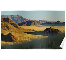 in the Namib desert Poster