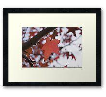 Feel Like Autumn Framed Print
