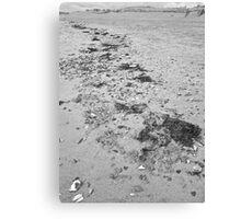 High tide line Canvas Print