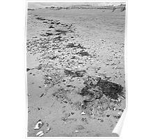 High tide line Poster