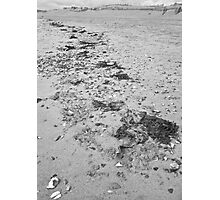 High tide line Photographic Print