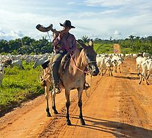 cattle drive in the Brazilian interior  by yesdigiterarte