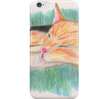 Meow-meow sleeping in a shoe box iPhone Case/Skin