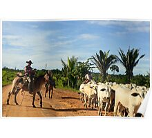 the cattle drive in the Brazilian interior 2 Poster
