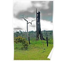the monument to the Amazon Rain Forest 006 Poster