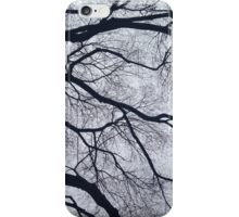 Trees and Sky Pt. 2 iPhone Case/Skin