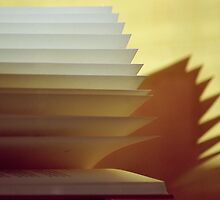 An open Book (3) by KUJO-Photo
