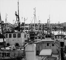 Reykjavik harbour by Ólafur Már Sigurðsson