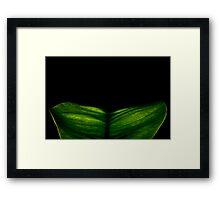 Natures Glow Framed Print