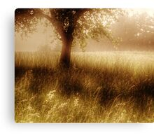 ..oo°::O o .°O o°...Calm Nature... °o O°. o O::°oo.. Canvas Print