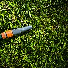 Lawn Maintenance And Garden Care by Ryan Jorgensen