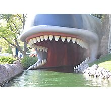 Pinocchio Monstro Whale Mouth Figaro  Photographic Print