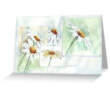 The Little Daisy  Greeting Card