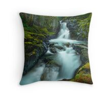 The Falls of Strathcona Throw Pillow