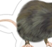 Rat by Anne Winkler Sticker