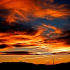 Powerline Sunset by Dianne Phelps