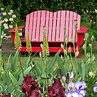 Iris Garden Bench In Red by thomr