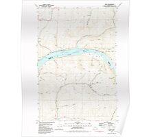 USGS Topo Map Washington State WA Ping 243139 1981 24000 Poster