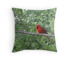 Mr. Cardinal Throw Pillow