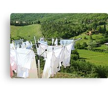 Wash and dry on countryside Canvas Print