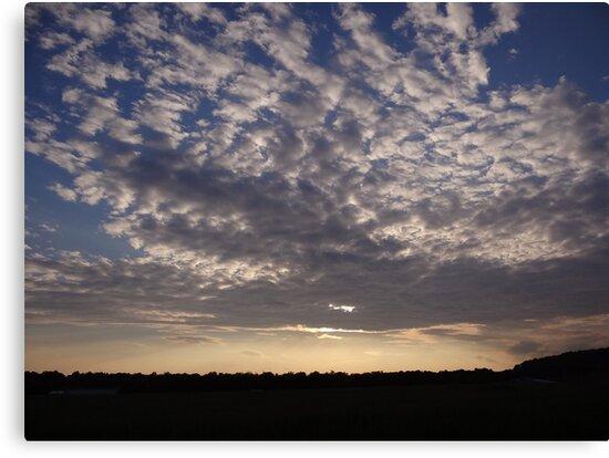 Night Sky by vigor