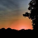 Sunset at Pecan Grove Park by aprilann